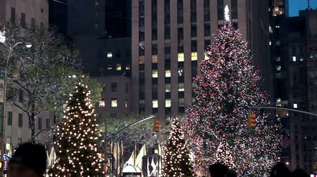 centrum : Decorated Street with Christmas tree, New York.