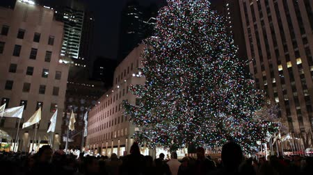 merkez : Decorated Christmas Tree, New York.