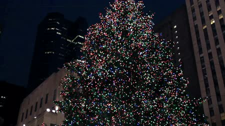 centrum : Christmas Tree with Crowd of People, New York.