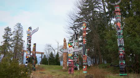 bennszülött : Angled footage of seven First Nations totem poles, all different styles, standing near trees in an outdoor display in Vancouver, British Columbia, Canada.