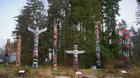 sas : Seven First Nations totem poles, all different styles, stand near trees in an outdoor display in Vancouver, British Columbia, Canada.