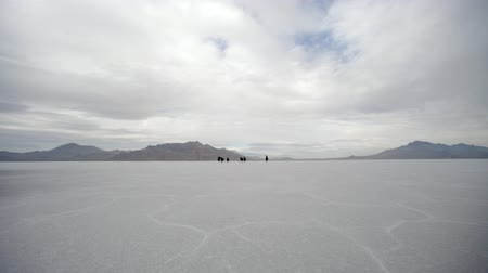 flâmula : Horses running from the far distance to up close with cowboys pushing them on the Bonneville Salt Flats in Utah.