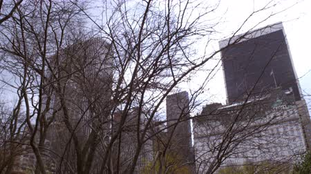 daireler : Dolly shot of trees partially covering distant buildings in New York City. Because of the dolly shot the trees closest to the camera appear to be moving fast while the buildings behind remain motionless.