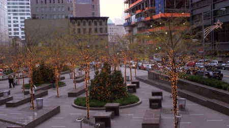 boŻe narodzenie : Panning shot of decorated trees with lights in New York City. They are placed along a small series of benches in the middle of a square. Wideo