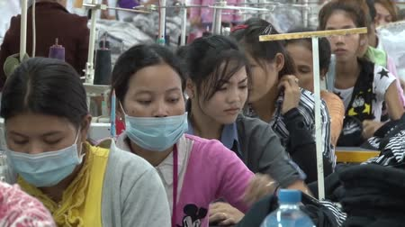szycie : Female garment workers as they work in a row at their sewing machines.