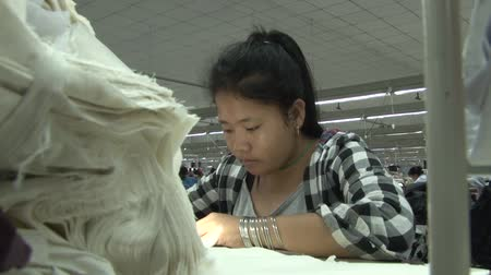 clothing : Female garment worker at her machine with stack of white fabric pieces in foreground Stock Footage