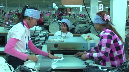 têxtil : Garment workers place fabric stripswith backing into a heat roller in a garment factory