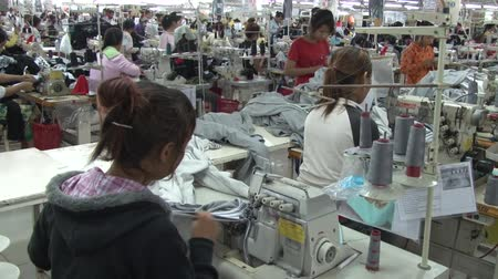 indústria : Medium shot of garment worker sewing greay fabric strips with rows of other unidentified workers clearly seen in background Stock Footage