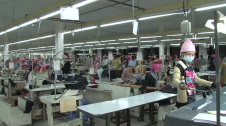 indústria : Pan from worker prepping garment bundles to wide shot perspective of active garment factory floor with many workers at their machines