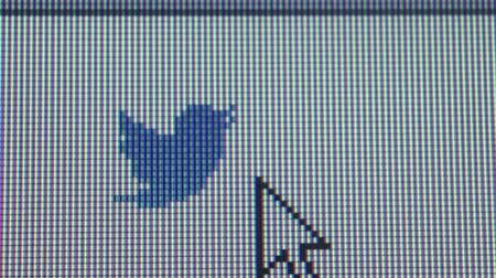ciberespaço : Macro close up of synchronized computer monitor showing small Twitter bird icon and user  cursor moving nearby  Vídeos
