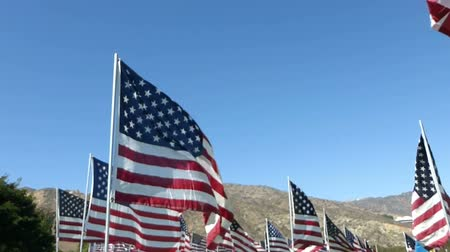 walkthrough : Stablized walkthrough of hundreds of American flags on a green lawn, with several other international flags seen here and there.  Arid mountains of Southern California can be seen in the background.