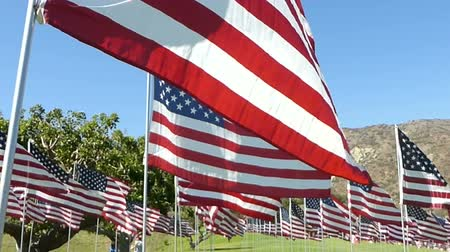 walkthrough : Stabilized walkthrough of hundreds of American flags on a green lawn, with several other international flags seen here and there.  Arid mountains of Southern California can be seen in the background. Stock Footage