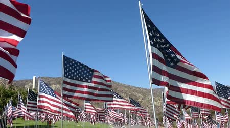 bandeira americana : Stablized walkthrough of hundreds of American flags on a green lawn, with several other international flags seen here and there.  Arid mountains of Southern California can be seen in the background.