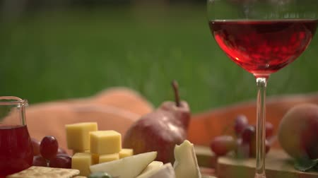 молочный : Table with glass of rose wine and appetizer on grass view Стоковые видеозаписи