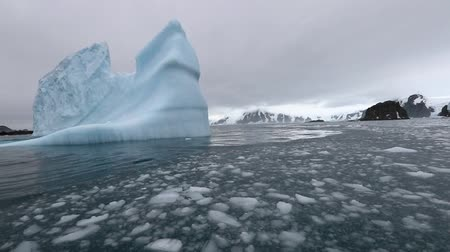 antártica : The water in the bay swayed and washes the iceberg. Andreev.