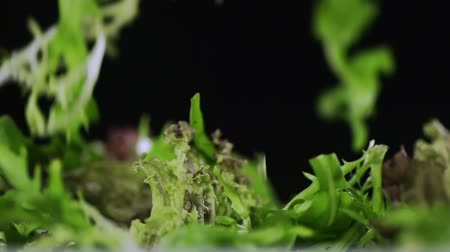 backround : Leaves of lettuce fall on each other.