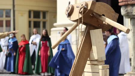 knightly : Wooden large arbalest medieval weapon.