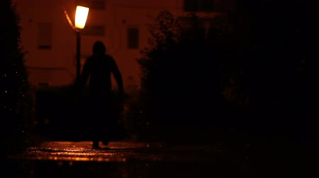 fosztogató : Silhouette of a man with hood, seen carrying a bag on a dark and poorly lit alley, in a cold damp night.