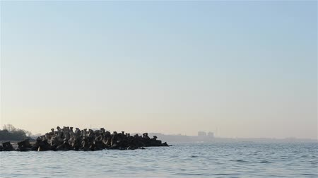 levee : A sunset panorama of sea breakwater constructions, with view of harbour in the background. Sound included. Suitable for break water technologies illustration and artificial bay designs.