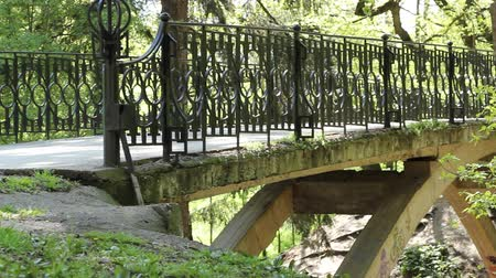 sustain : Pan shot of iron bridge over a  ravine in the sunny afternoon , in park. Stock Footage