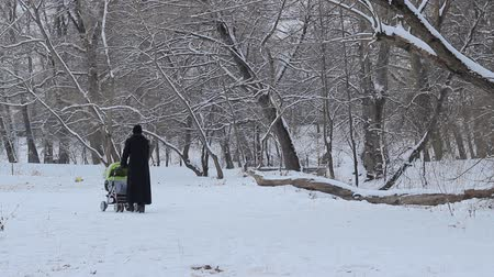 necessity : Mother in black winter coat walks with baby stroller on the snowy park alleys.
