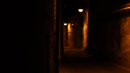 uliczka : Pan shot of old medieval ruined houses and cobblestone alley, on dark night. Wideo
