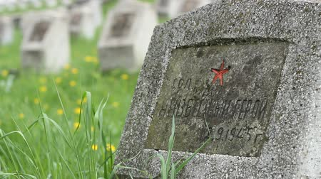 temető : A Red Army soldier grave, on a military cemetery, dead on war fightings of WWII. Stock mozgókép