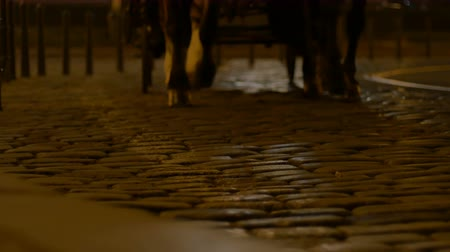 rua : A night coach is passing on the cobblestone old road.
