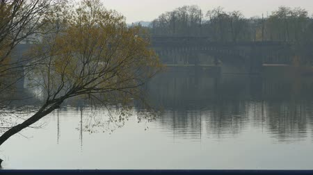 hradcany : Bridge over Vltava river in Prague in a grey autumn day. Stock Footage