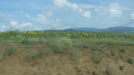 woodcut : Romanian landscapes view from travelling train. Stock Footage