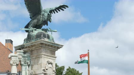 vulture : Hungarian flag waving in wind and bronze eagle statue at Buda Castle in Budapest.