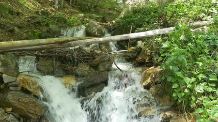 serenidade : Summer waterfall view in the forest.
