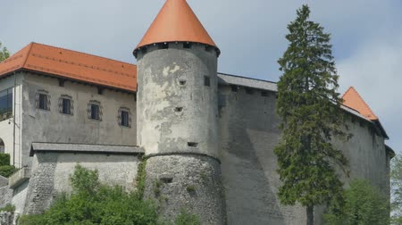 slovenya : View of Bled Castle in Slovenia. Stok Video