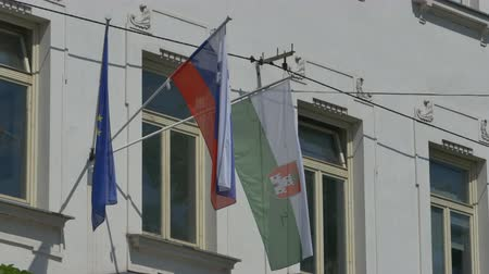 hazafiasság : View of Slovenia and European Flag on front of a building.