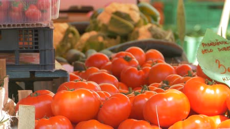 domates : View of fresh organic tomatoes of local producers. Stok Video