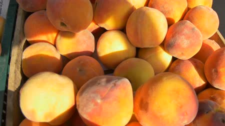 View of organic peaches for sale at local market.