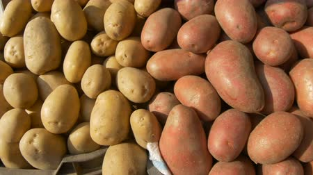 для продажи : View of organic potatoes for sale on local market.