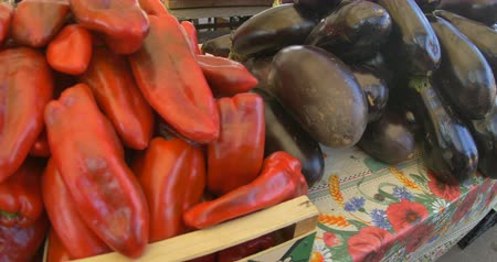 capsicum : View of organic pepperoni and eggplants for sale at the local marketpalce. Stock Footage