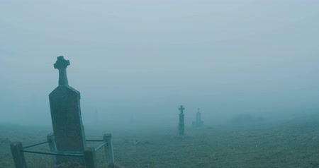 dead forest : Walking along crosses on misty graveyard. Stock Footage