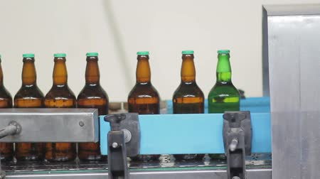cervejaria : Automatic Line for Bottling Beer at the Brewery