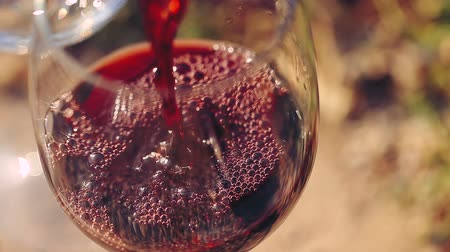 winnica : Red wine poured into glass.
