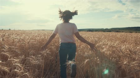 Little girl running cross the wheat field at sunset.Slow motion,high speed camera Stock Footage