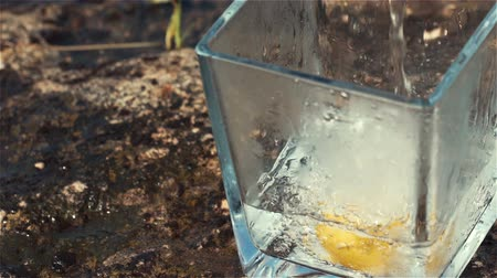 100fps Slow Motion of Sparkling Water and Lemon Falling into Glass