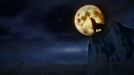 farkas : Wolf howling to the moon.