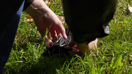 cüzdan : Man finds wallet in a grass and takes money from it. Stok Video