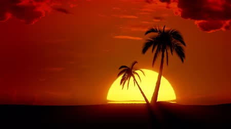 şafak : Time-lapse tropical sunrise with palm trees and clouds Stok Video
