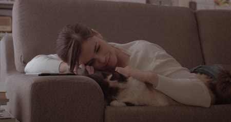 lying cat : Woman relaxing at home with her pet, she is lying on the sofa and cuddling her cat Stock Footage