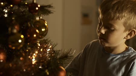 önemsiz şey : Cute boy decorating his Christmas tree at home, he is adjusting Christmas baubles and smiling Stok Video