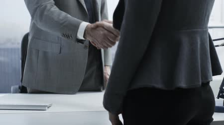 werk zoeken : Corporate business people meeting in the office, shaking hands and sitting: business relationships concept