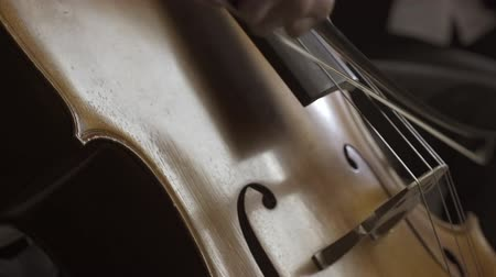 театральный : Professional musician playing cello on stage, close up